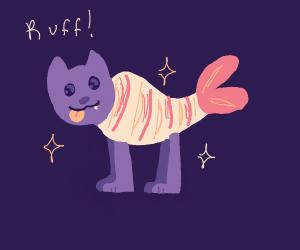 Dog shrimp