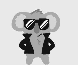koala (Amazing)
