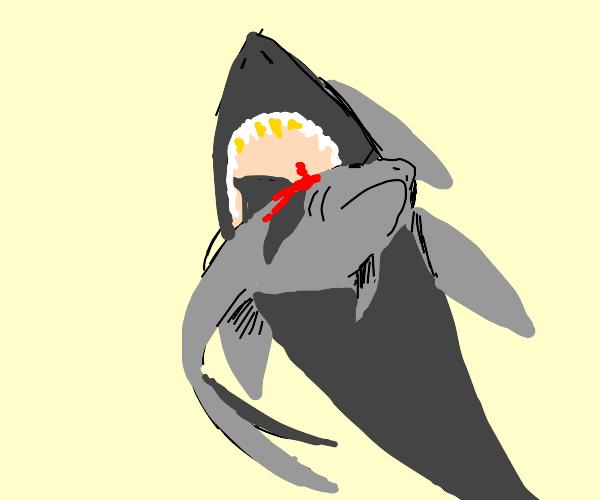 Shark eating a smaller shark