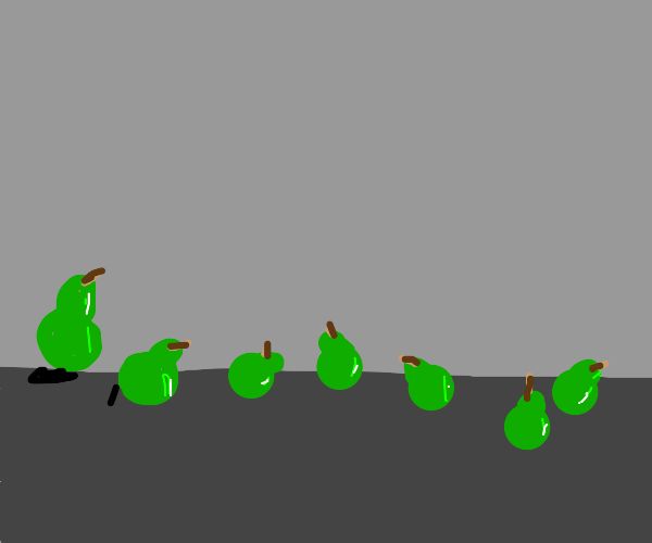 a line of pears