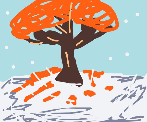Autumn tree but its on winter