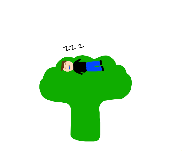 Man dreams of getting picked up by broccoli.