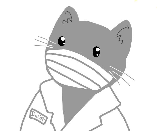 cat doctor quarantine