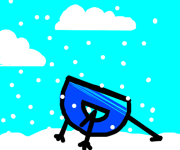 D doing push-ups in the snow