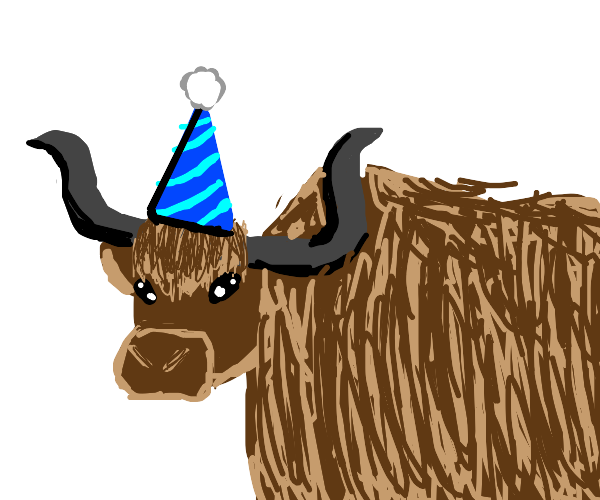 yak at a party