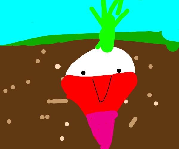a smiling radish