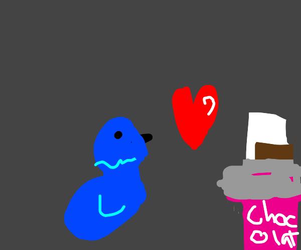 bluebird loves chocolate