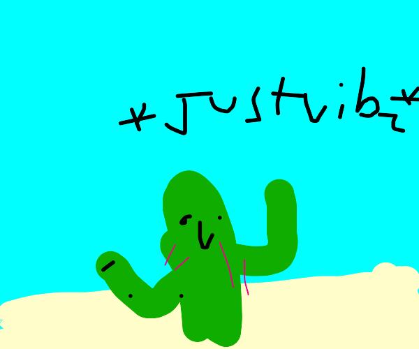 Cacti vibing