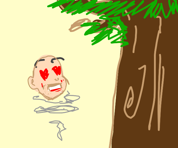 Floating head loves a big tree
