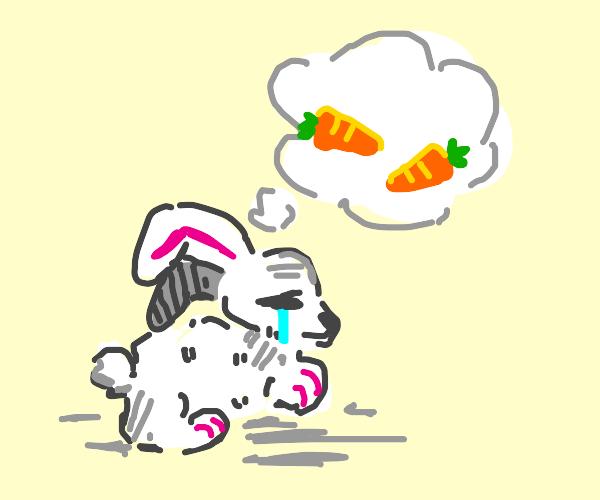 sad bunny thinkin bout some carrots