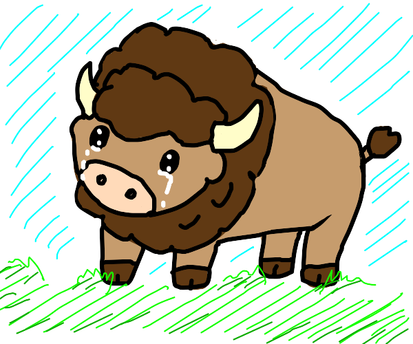 Crying Bison