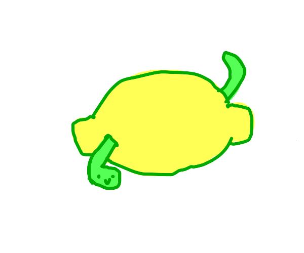 That caterpillar going through a lemon