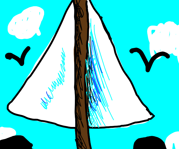 the sails on a sailboat