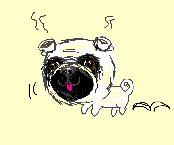 pug with teacups for ears