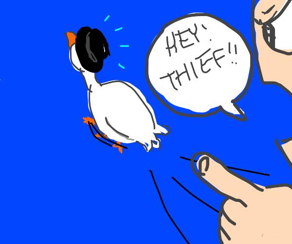 Goose stealing hat