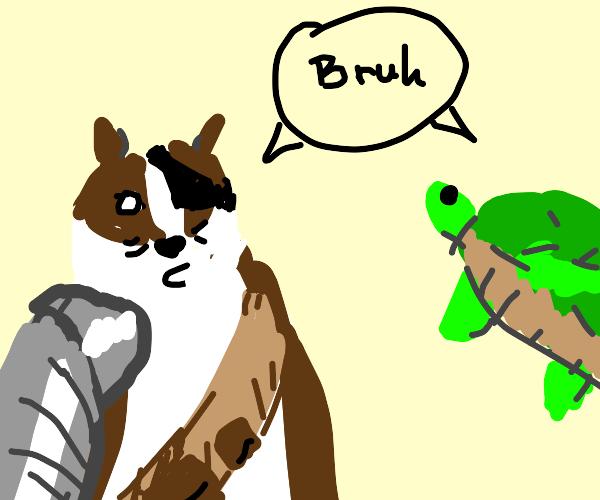 Badger and tortoise speak gibberish