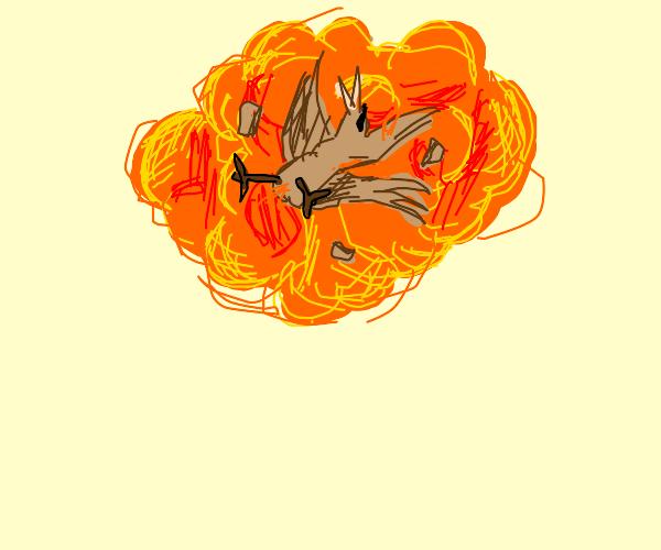 tiny bird exploding with style