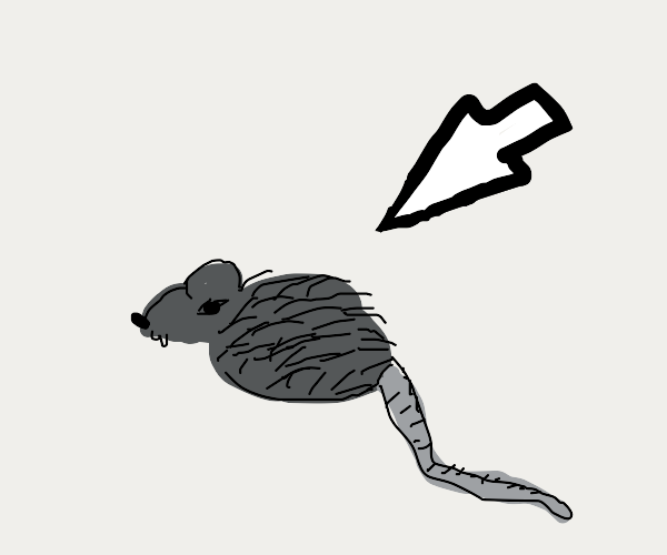 Arrow pointing at mouse