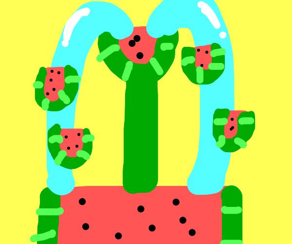 Watermelon fountain
