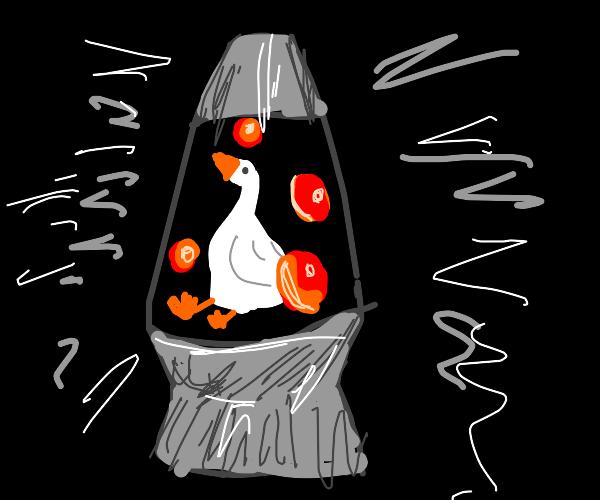 Goose in a Lava Lamp