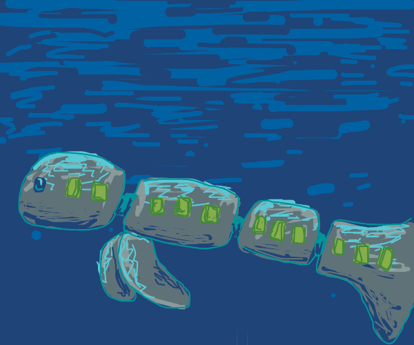 whale train at night