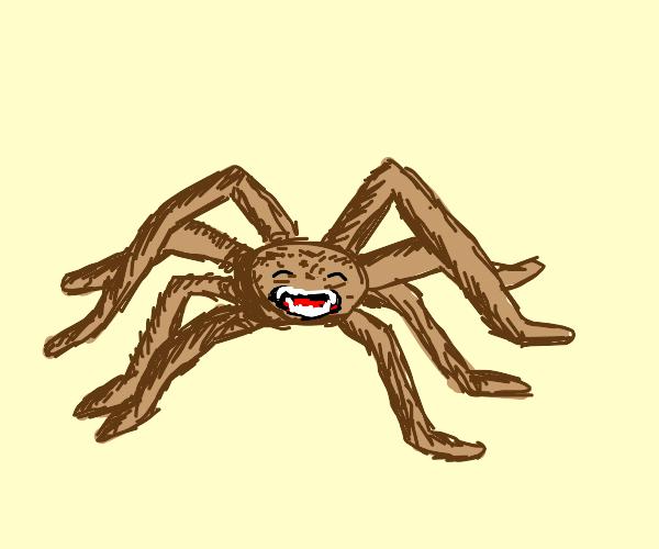 A very happy tarantula