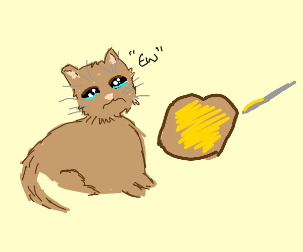 cat is disgusted by buttered bread