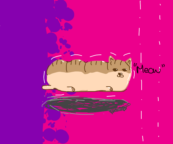 Loaf of bread but it's a Cat