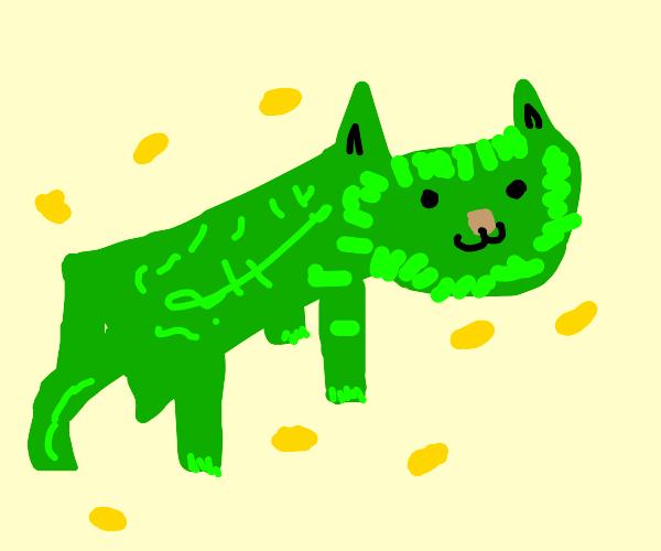 Weird green money cat