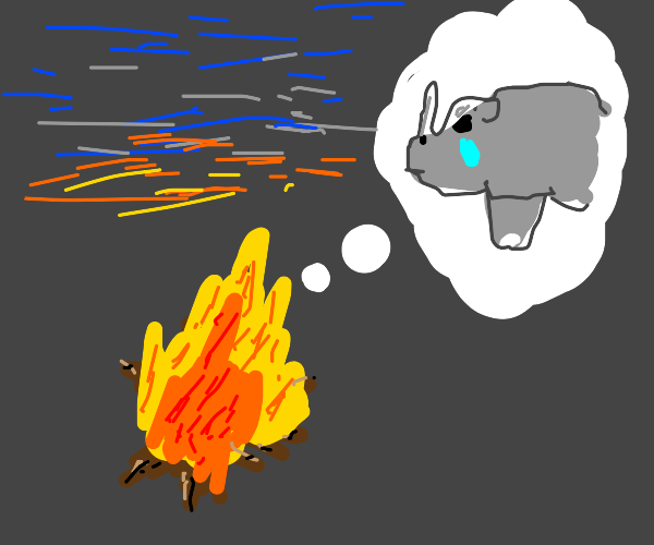 Fire thinks about a rhino being sad?