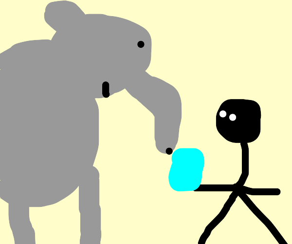 men give water to an elephant