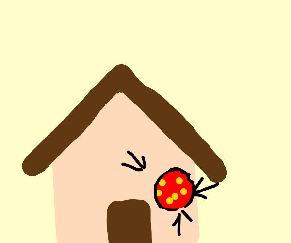 Pizza window