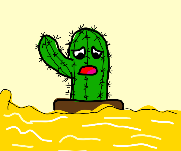 Disgusted cactus drowning in pee