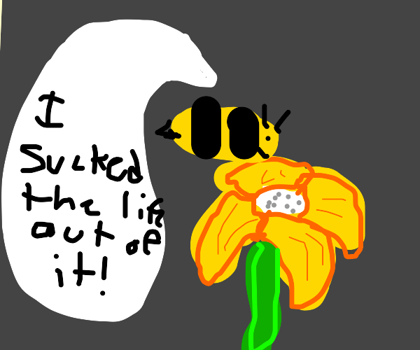 Bee sucks the life out of flower