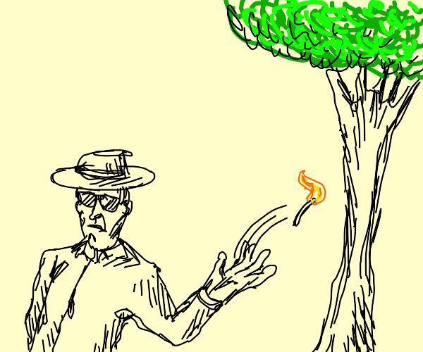 Incognito arboreal arson.
