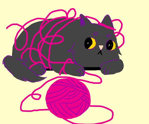 cat tangled in yarn