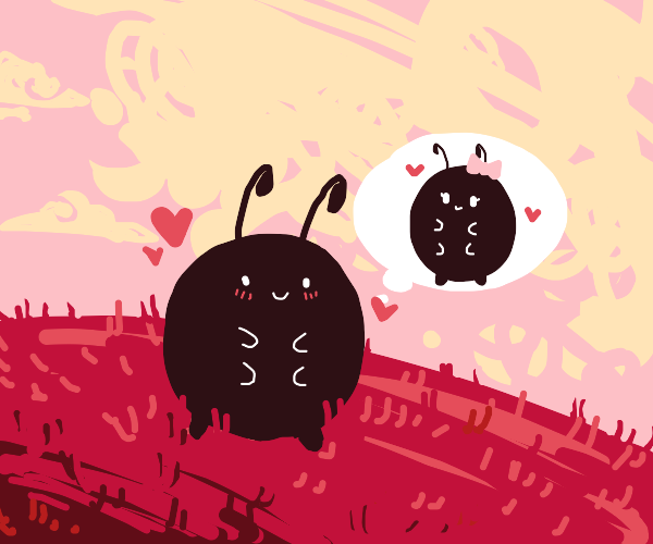 a bug in love