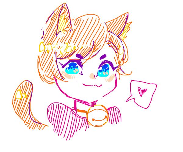 cute colorful neko boy