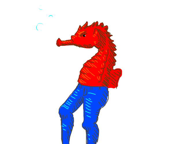 Seahorse with jeans
