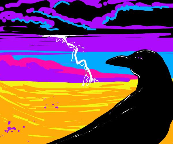 Crow watches a desert storm