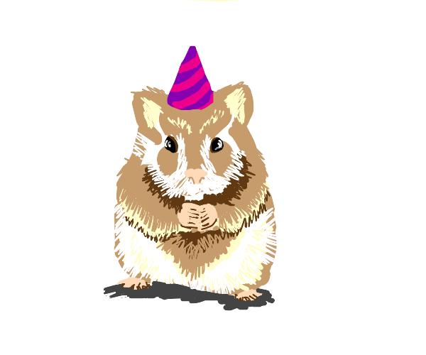 Hamster wearing a Hat