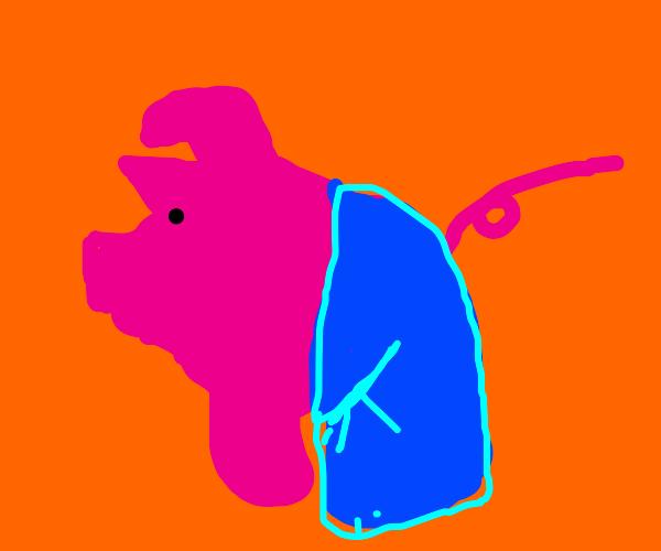 Pig wearing pants