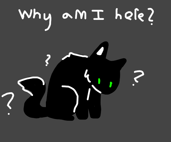 A cat question his life choices