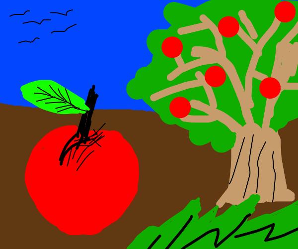 Big apple and tree