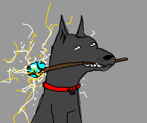 Dog with magic wand