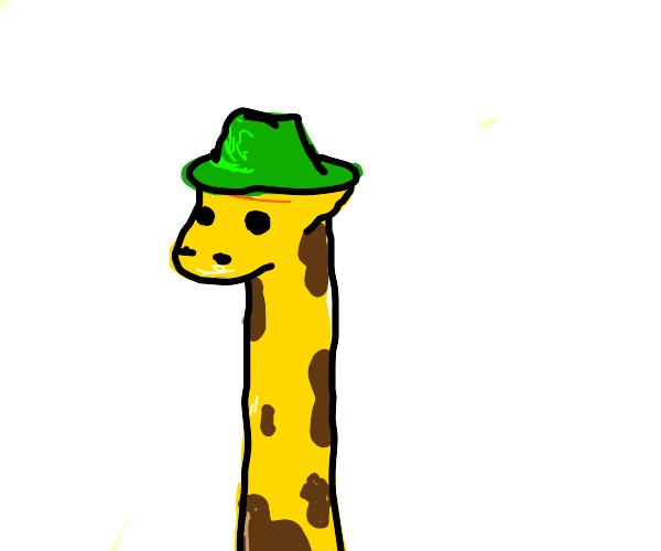 Giraffe in a green hat