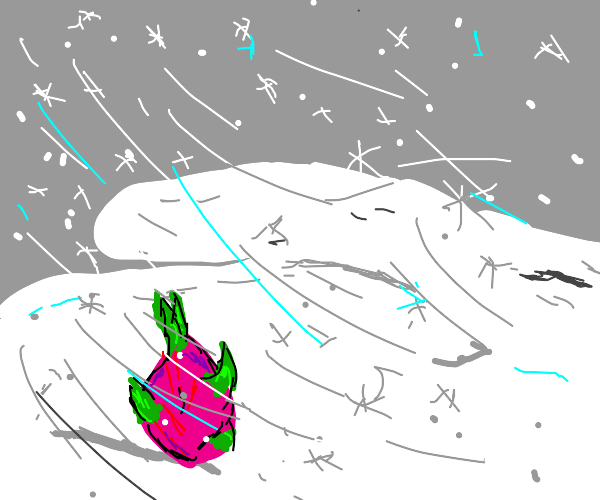 Dragonfruit in a Snowstorm