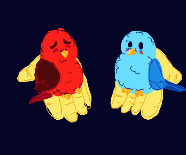 Which you take? Blue bird or red bird? Choose