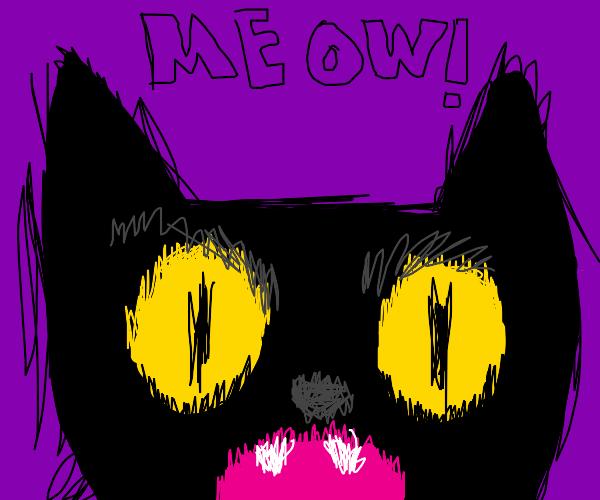 Evil cat will kill you! Meow!