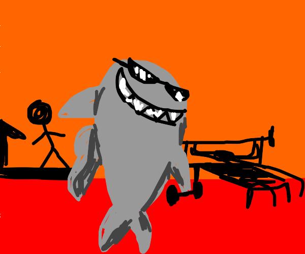 gym bro shark